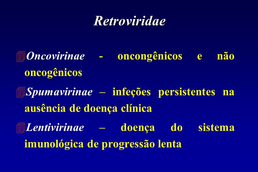 Retroviridae 4Oncovirinae - oncongênicos e não oncogênicos 4Spumavirinae – infeções persistentes na ausência de doença clínica 4Lentivirinae – doença