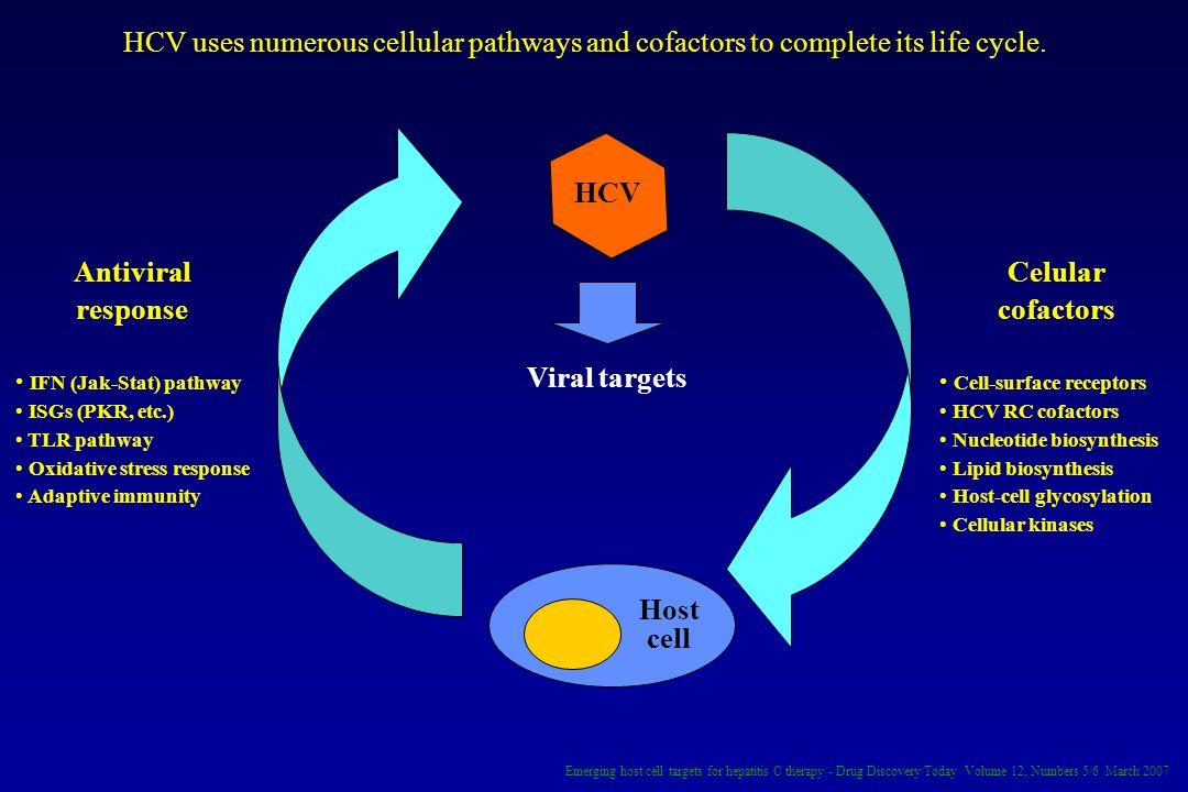 Host cell HCV Viral targets Antiviral response IFN (Jak-Stat) pathway ISGs (PKR, etc.) TLR pathway Oxidative stress response Adaptive immunity Celular