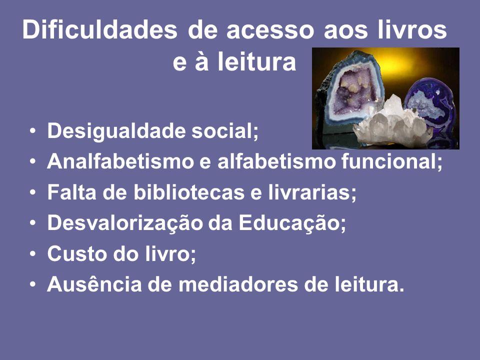 Desigualdade social; Analfabetismo e alfabetismo funcional; Falta de bibliotecas e livrarias; Desvalorização da Educação; Custo do livro; Ausência de