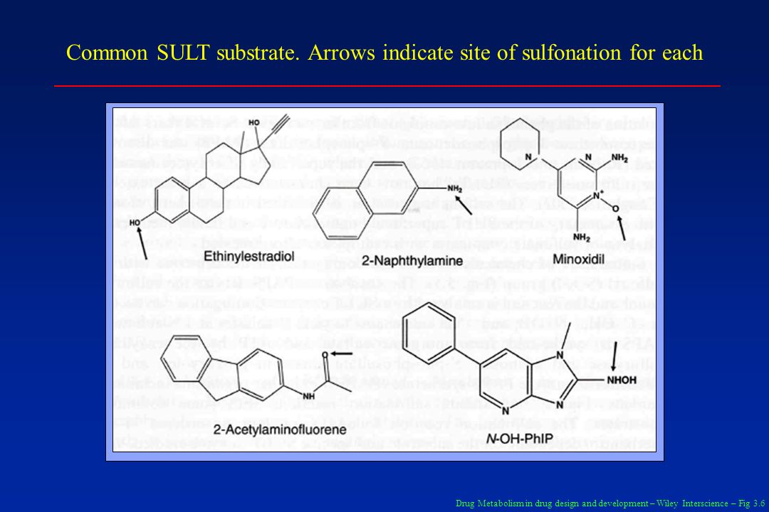 Common SULT substrate. Arrows indicate site of sulfonation for each Drug Metabolism in drug design and development – Wiley Interscience – Fig 3.6