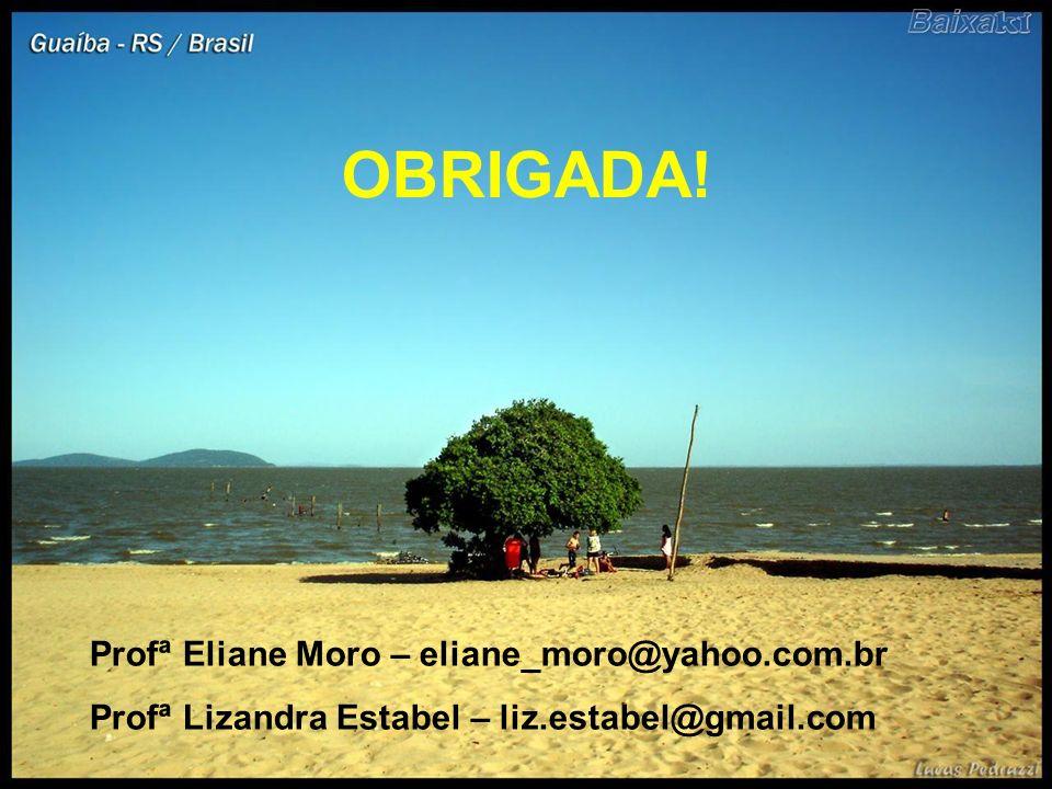 OBRIGADA! Profª Eliane Moro – eliane_moro@yahoo.com.br Profª Lizandra Estabel – liz.estabel@gmail.com