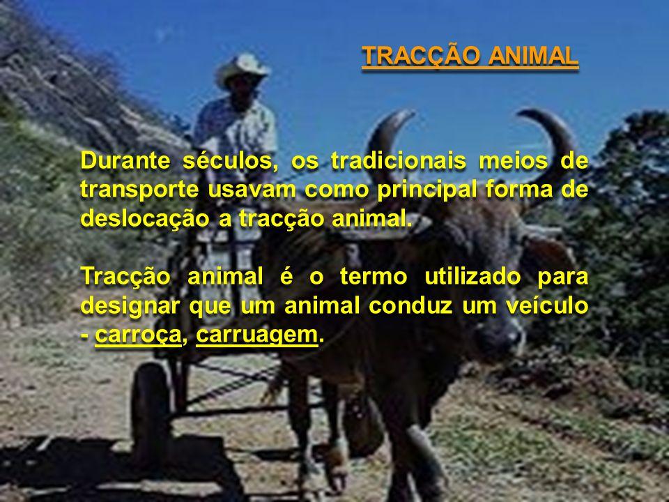 TRACÇÃO ANIMAL Durante séculos, os tradicionais meios de transporte usavam como principal forma de deslocação a tracção animal. Tracção animal é o ter
