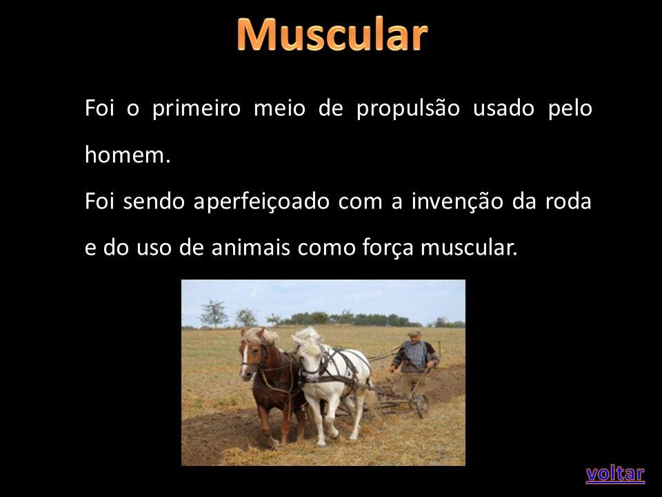 Foi o primeiro meio de propulsão usado pelo homem. Foi sendo aperfeiçoado com a invenção da roda e do uso de animais como força muscular.