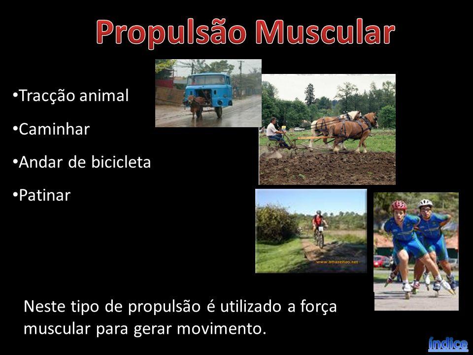 Tracção animal Caminhar Andar de bicicleta Patinar Neste tipo de propulsão é utilizado a força muscular para gerar movimento.