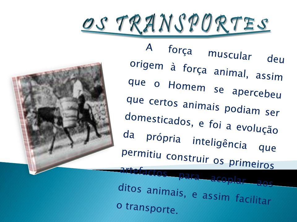 Os transportes públicos tornaram-se o meio mais acessível para nos fazermos transportar.