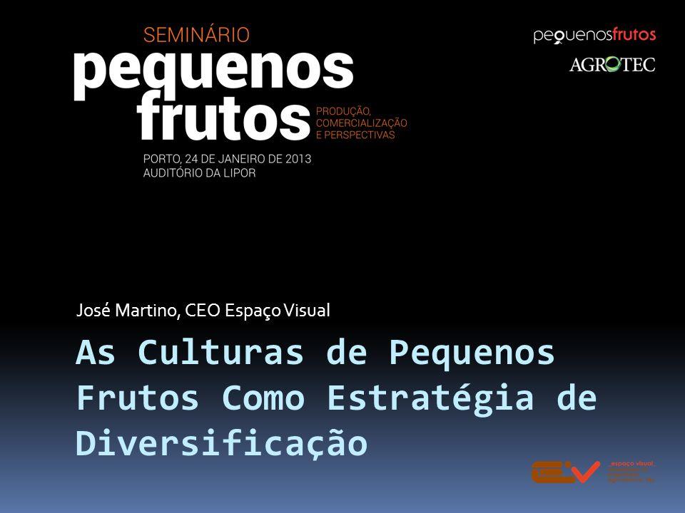 As Culturas de Pequenos Frutos Como Estratégia de Diversificação José Martino, CEO Espaço Visual