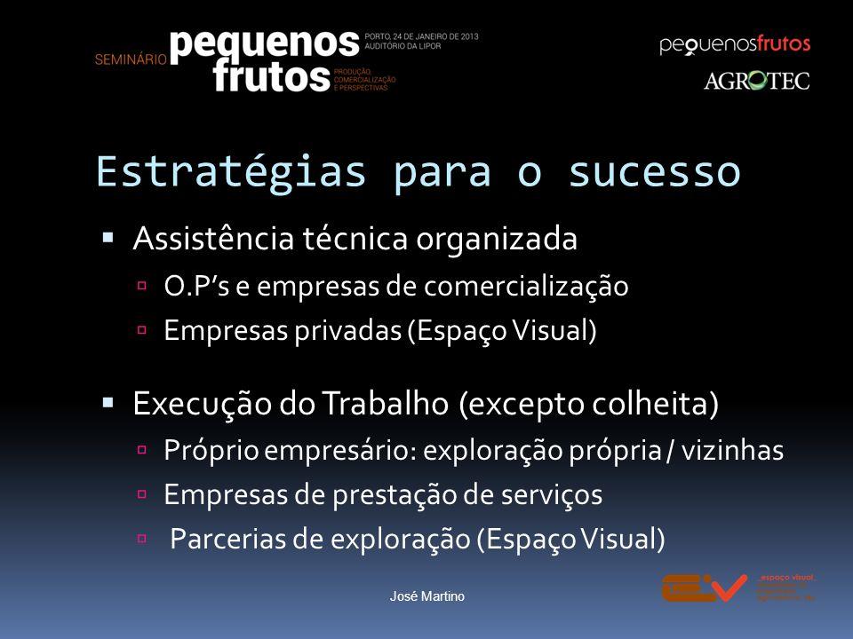Estratégias para o sucesso Assistência técnica organizada O.Ps e empresas de comercialização Empresas privadas (Espaço Visual) Execução do Trabalho (e