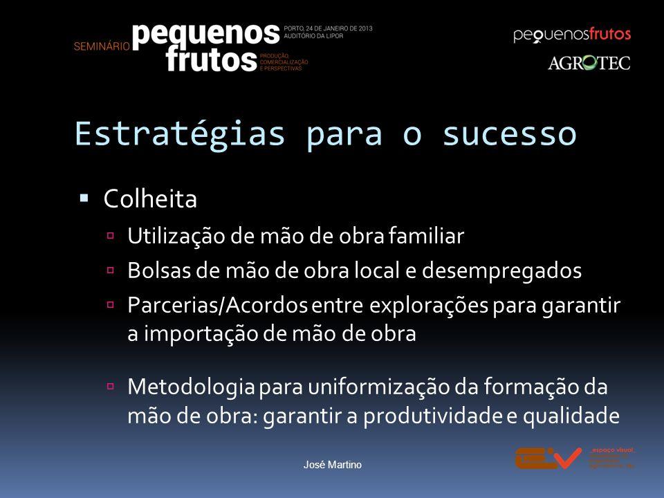 Estratégias para o sucesso Colheita Utilização de mão de obra familiar Bolsas de mão de obra local e desempregados Parcerias/Acordos entre explorações