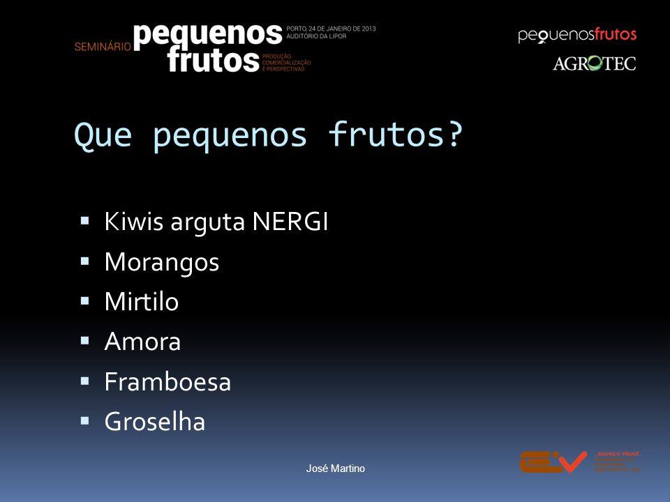 Que pequenos frutos? Kiwis arguta NERGI Morangos Mirtilo Amora Framboesa Groselha Morango José Martino