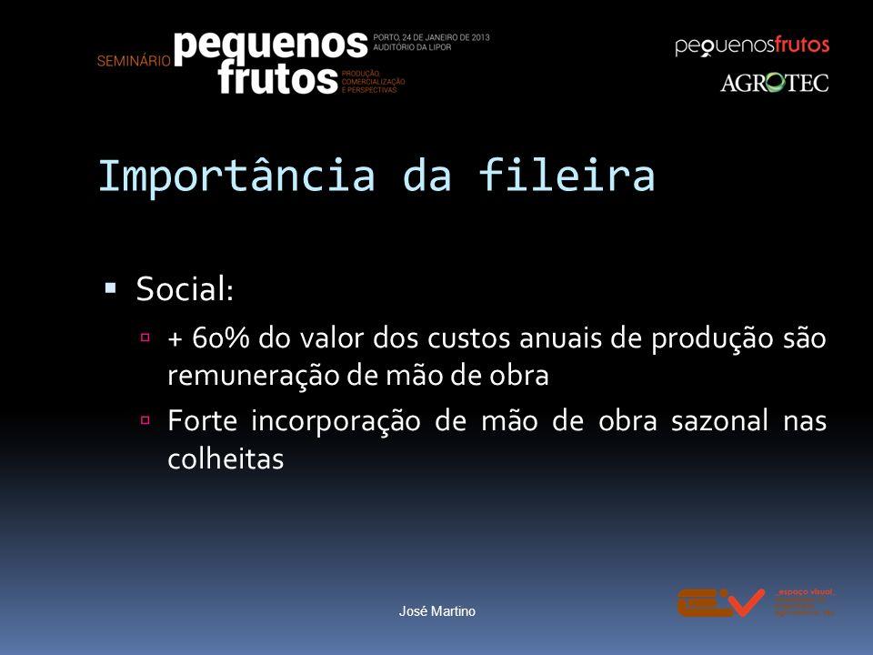 Importância da fileira Social: + 60% do valor dos custos anuais de produção são remuneração de mão de obra Forte incorporação de mão de obra sazonal n