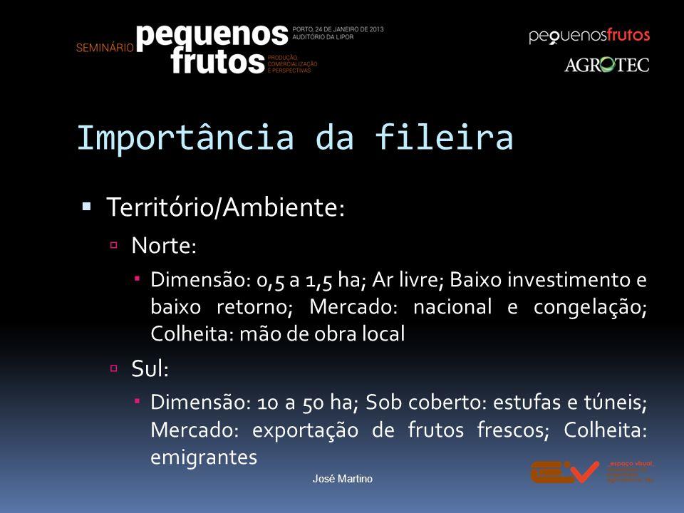 Importância da fileira Território/Ambiente: Norte: Dimensão: 0,5 a 1,5 ha; Ar livre; Baixo investimento e baixo retorno; Mercado: nacional e congelaçã