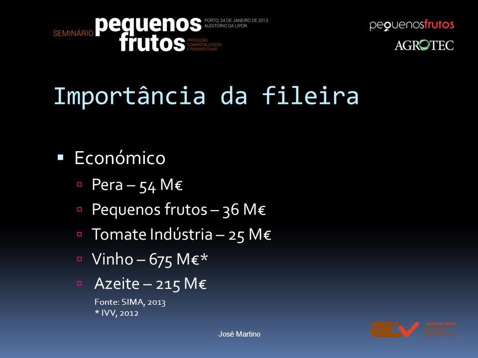 Importância da fileira Económico Pera – 54 M Pequenos frutos – 36 M Tomate Indústria – 25 M Vinho – 675 M* Azeite – 215 M Fonte: SIMA, 2013 * IVV, 201