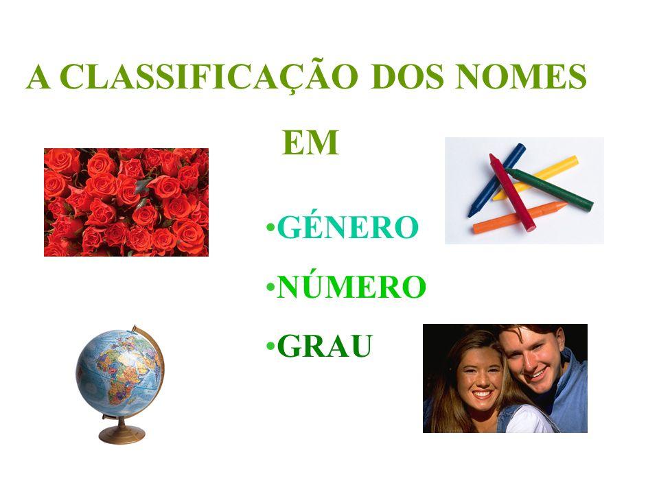 A CLASSIFICAÇÃO DOS NOMES EM GÉNERO NÚMERO GRAU