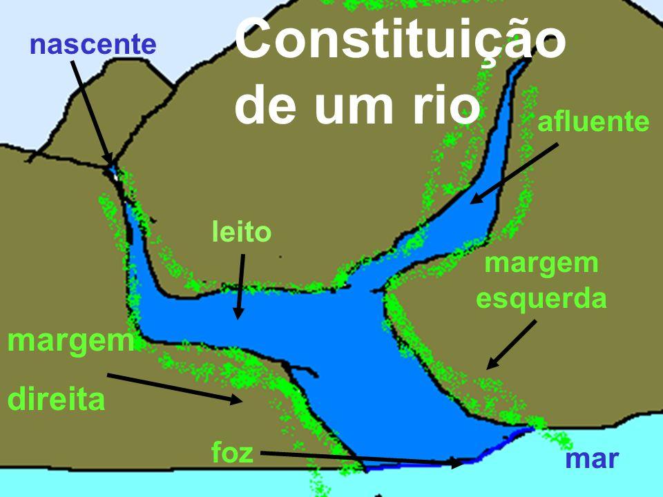 afluente margem direita margem esquerda foz mar nascente Constituição de um rio leito