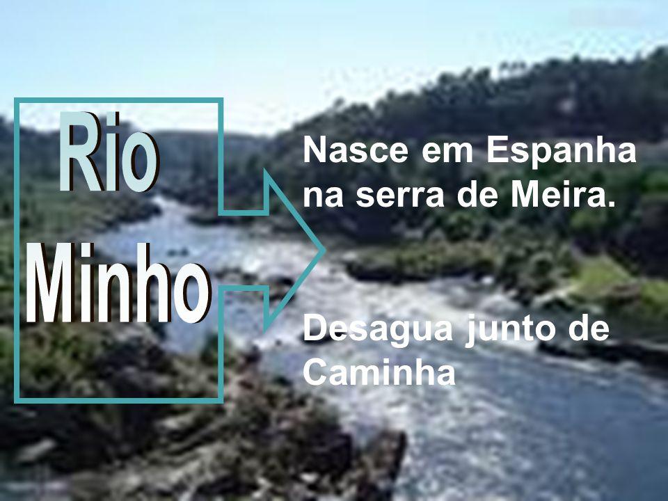 Nasce em Espanha na serra de Meira. Desagua junto de Caminha