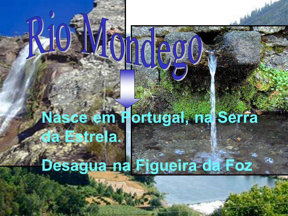 Nasce em Portugal, na Serra da Estrela. Desagua na Figueira da Foz