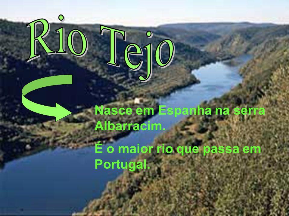 Nasce em Espanha na serra Albarracim. É o maior rio que passa em Portugal.