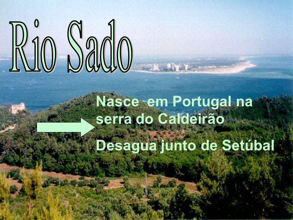 Nasce em Portugal na serra do Caldeirão Desagua junto de Setúbal