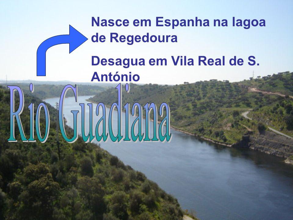 Nasce em Espanha na lagoa de Regedoura Desagua em Vila Real de S. António