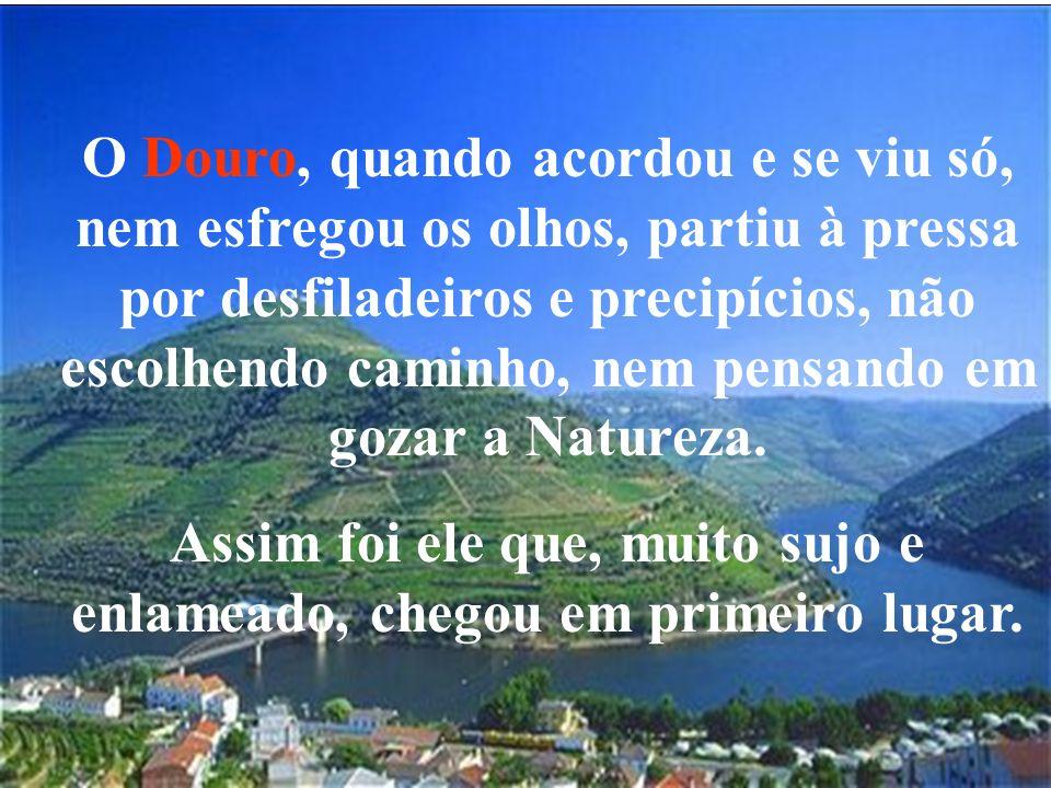 O Douro, quando acordou e se viu só, nem esfregou os olhos, partiu à pressa por desfiladeiros e precipícios, não escolhendo caminho, nem pensando em g