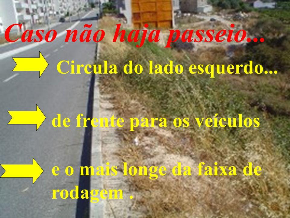 Caso não haja passeio... Circula do lado esquerdo... de frente para os veículos e o mais longe da faixa de rodagem.