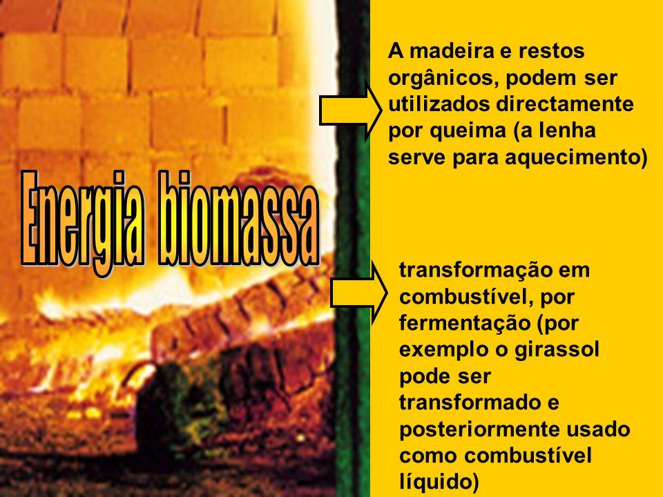 A madeira e restos orgânicos, podem ser utilizados directamente por queima (a lenha serve para aquecimento) transformação em combustível, por fermenta