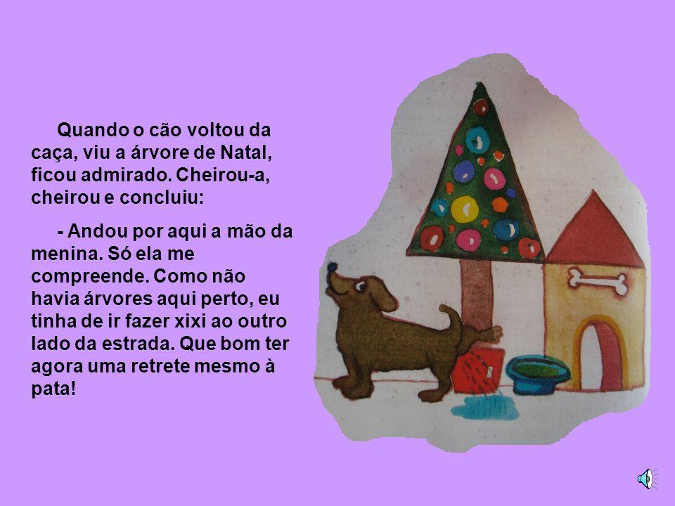 Por isso, quando chegou o Natal, a menina pensou que era triste os cães não terem Natal. Cortou um pinheiro, enfeitou-o com bolinhas coloridas e espet