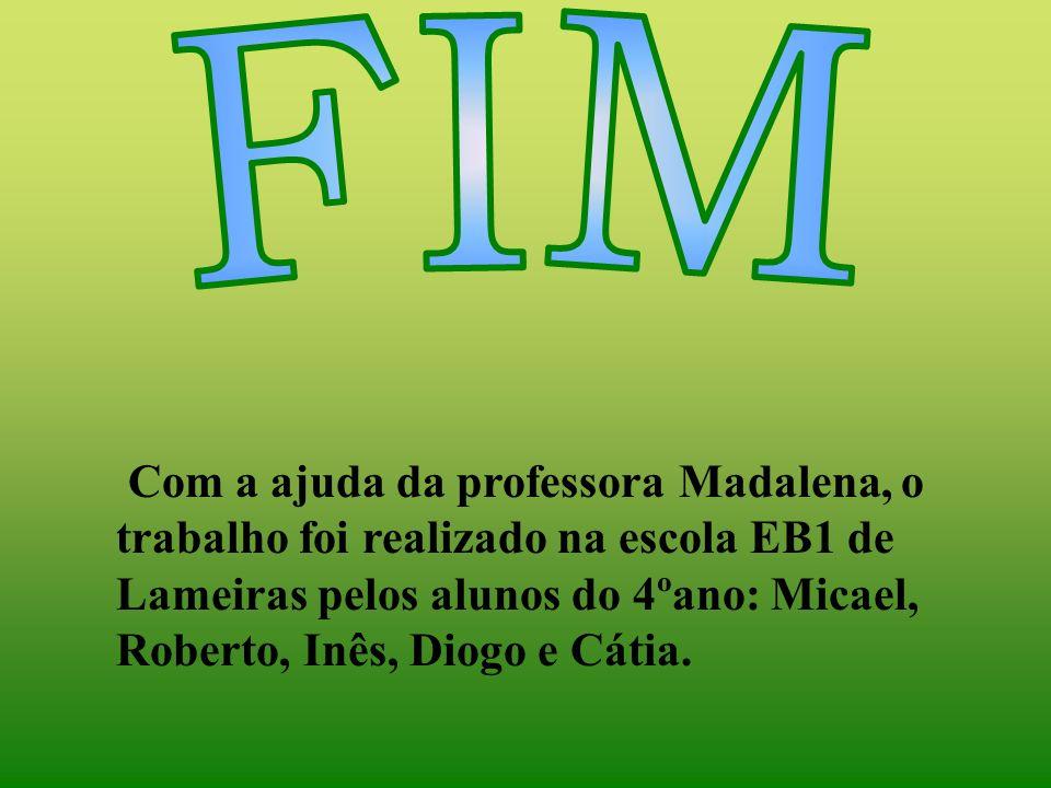 Com a ajuda da professora Madalena, o trabalho foi realizado na escola EB1 de Lameiras pelos alunos do 4ºano: Micael, Roberto, Inês, Diogo e Cátia.