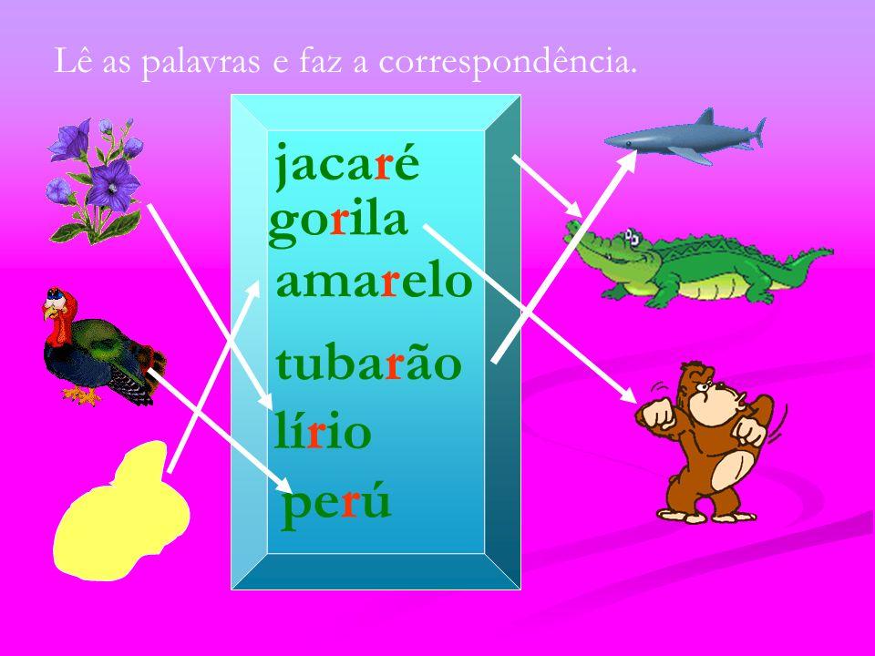 jacaré Lê as palavras e faz a correspondência. tubarão lírio perú amarelo gorila