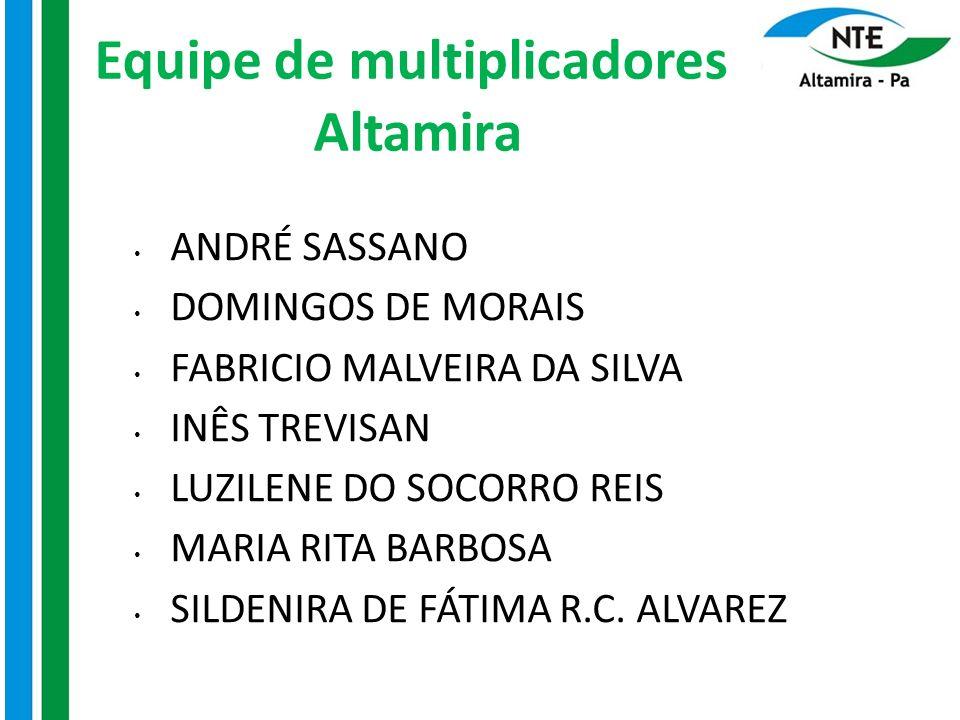 Equipe de multiplicadores Altamira ANDRÉ SASSANO DOMINGOS DE MORAIS FABRICIO MALVEIRA DA SILVA INÊS TREVISAN LUZILENE DO SOCORRO REIS MARIA RITA BARBO