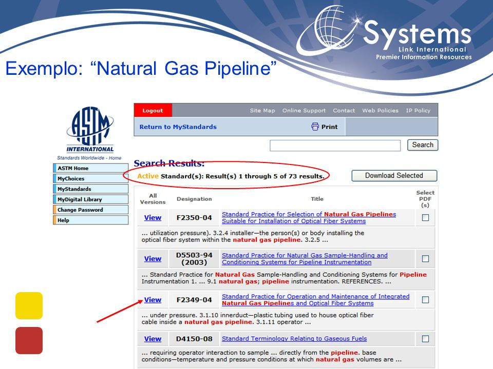 Exemplo: Natural Gas Pipeline