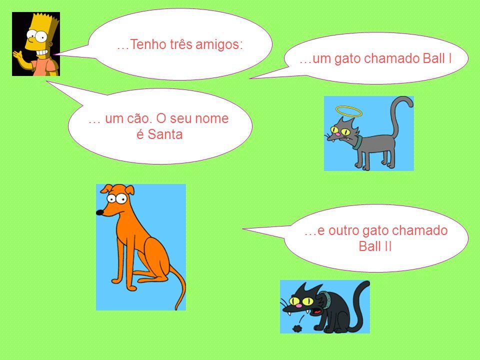 …Tenho três amigos: … um cão.