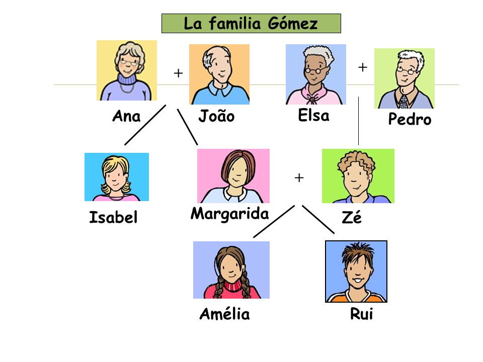Olha a árvore genealógica e diz se as afirmações são certas ou erradas