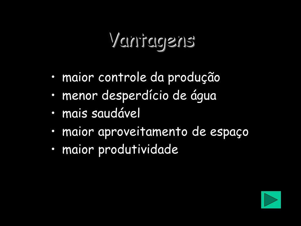 1-Produção de Alimento Hidroponia produção de alimentos sem o uso do solo, mas sim com solução aquosa nutritiva Luminosidade controlada e umidade acim