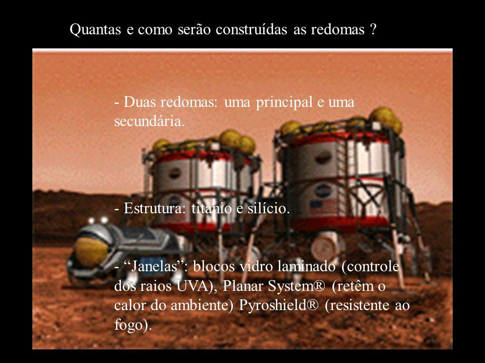 Metas Nossas metas são: -(29/02) Definir o tamanho exato da colônia, -(14/03) Criar uma biosfera com a função de produzir oxigênio, -(05/03) Definir os materiais e a disposição dos complexos da redoma principal.