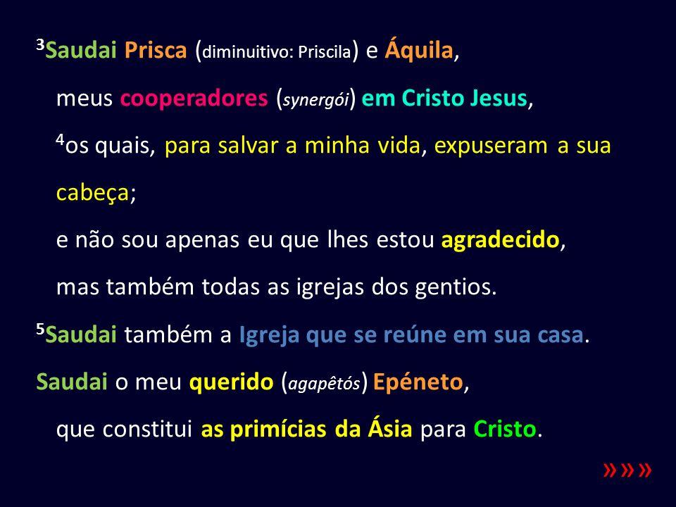 3 Saudai Prisca ( diminuitivo: Priscila ) e Áquila, meus cooperadores ( synergói ) em Cristo Jesus, 4 os quais, para salvar a minha vida, expuseram a sua cabeça; e não sou apenas eu que lhes estou agradecido, mas também todas as igrejas dos gentios.