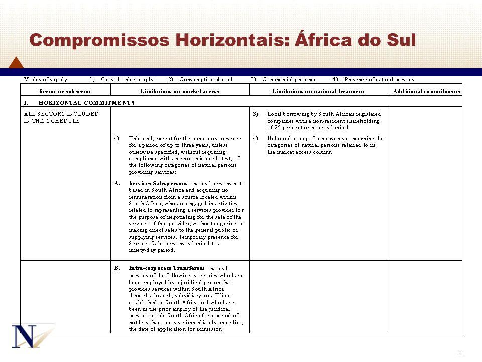 36 Compromissos Horizontais: África do Sul