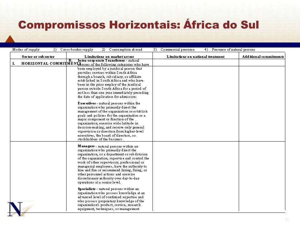 37 Compromissos Horizontais: África do Sul