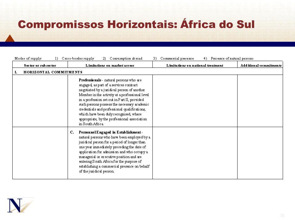 38 Compromissos Horizontais: África do Sul
