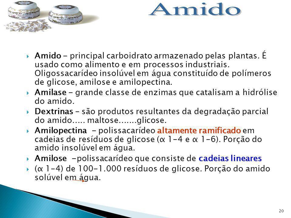 20 Amido - principal carboidrato armazenado pelas plantas.