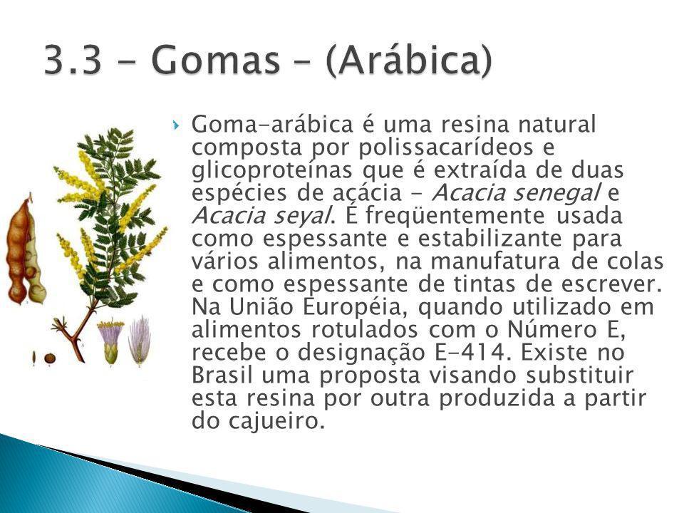 Goma-arábica é uma resina natural composta por polissacarídeos e glicoproteínas que é extraída de duas espécies de acácia - Acacia senegal e Acacia seyal.