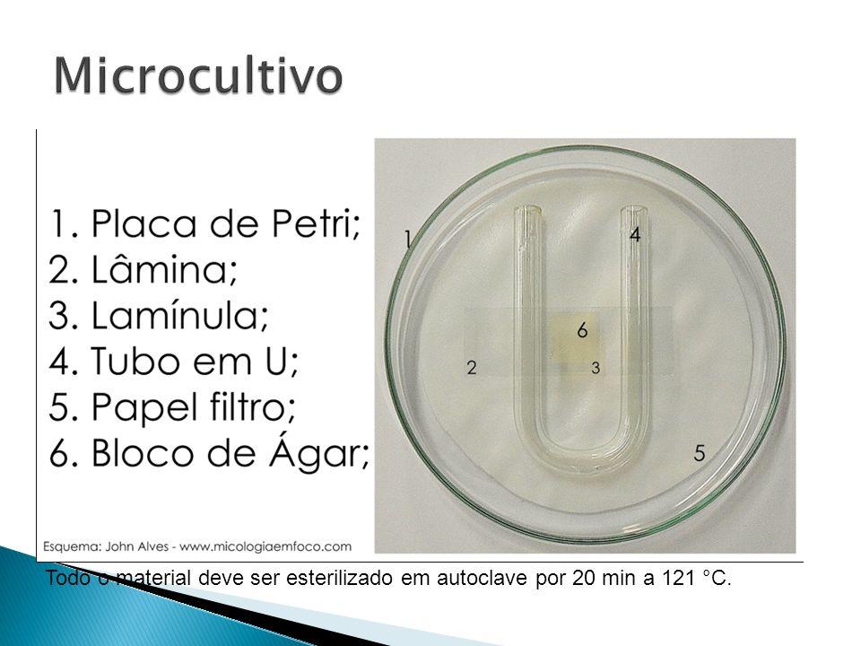 Todo o material deve ser esterilizado em autoclave por 20 min a 121 °C.