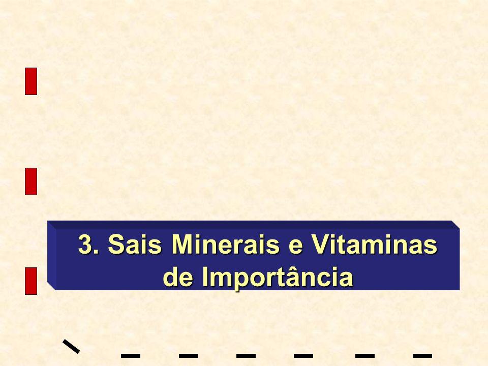 3. Sais Minerais e Vitaminas de Importância