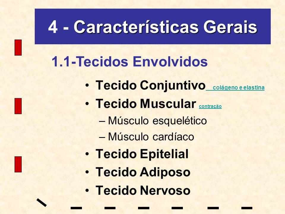 Características Gerais 4 - Características Gerais Tecido Conjuntivo colágeno e elastina colágeno e elastina Tecido Muscular contração contração –Múscu