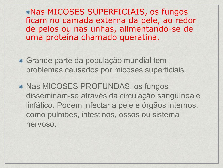 MICOSES SUPERFICIAIS ESTRITAS DERMATOFITOSES PIEDRAS TINEAS DERMATÓFITOS