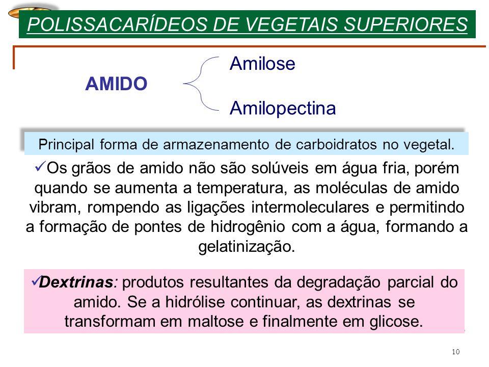 10 Principal forma de armazenamento de carboidratos no vegetal. AMIDO Amilose Amilopectina Os grãos de amido não são solúveis em água fria, porém quan