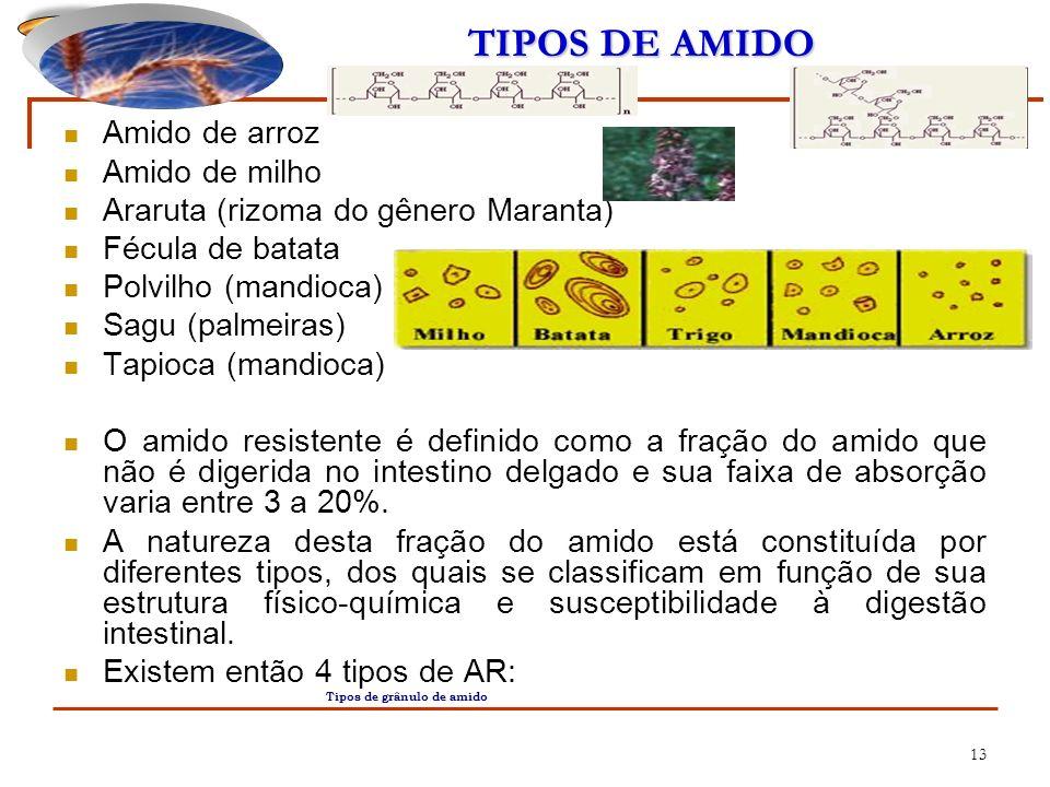 13 TIPOS DE AMIDO Amido de arroz Amido de milho Araruta (rizoma do gênero Maranta) Fécula de batata Polvilho (mandioca) Sagu (palmeiras) Tapioca (mand