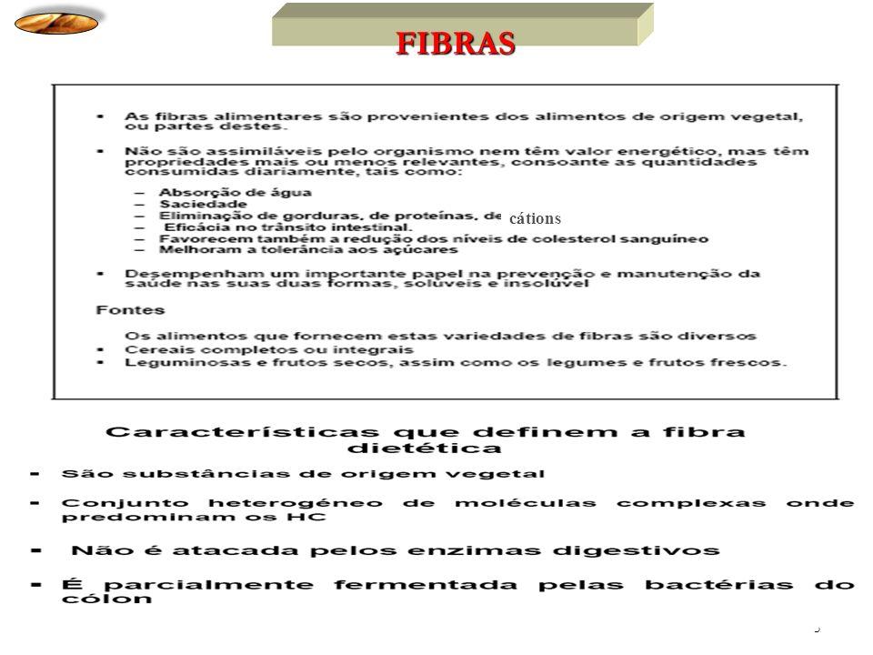 5 FIBRAS cátions