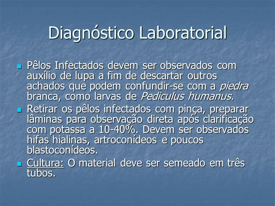 Diagnóstico Laboratorial Pêlos Infectados devem ser observados com auxílio de lupa a fim de descartar outros achados que podem confundir-se com a pied