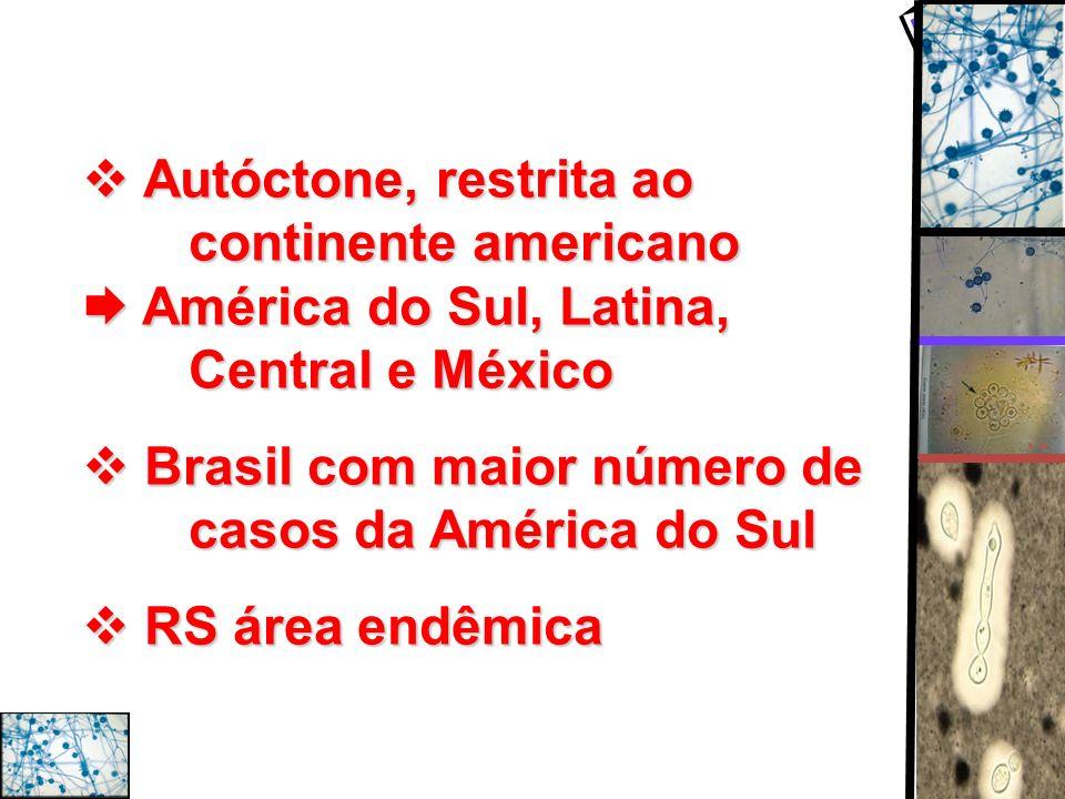 Autóctone, restrita ao continente americano América do Sul, Latina, Central e México Autóctone, restrita ao continente americano América do Sul, Latin